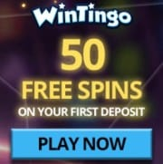 Wintingo Casino free spins